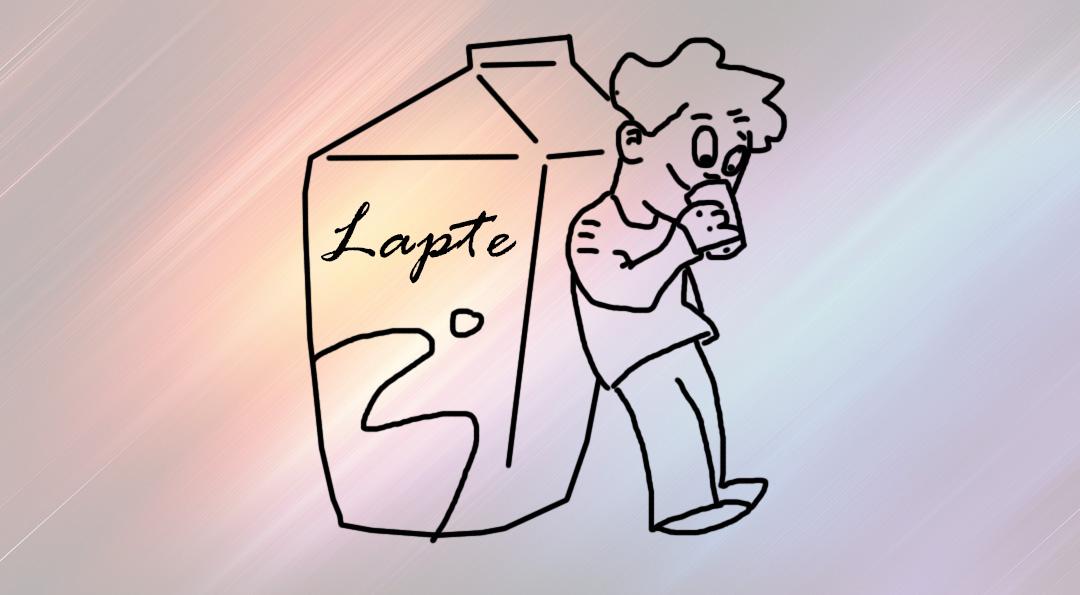 baiatul-si-cartonul-de-lapte